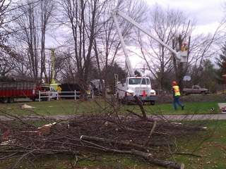 Cutting down trees in Tate Township_20111114113712_JPG