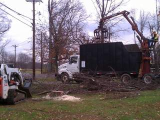 Cutting down trees in Tate Township_20111114120855_JPG