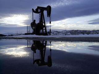 Local companies weigh impact from oil's decline