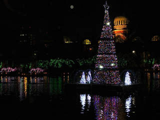 Festival_of_Lights_20121120163634_JPG