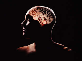 Facebook addicts' brains have less gray matter