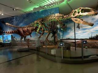 New exhibit 39 ultimate dinosaurs 39 to open at the cincinnati Dinosaur museum ohio