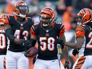 Bengals, Rey Maualuga agree to 3-year contract