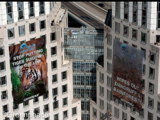 From Greenpeace to PETA: Why P&G is targeted