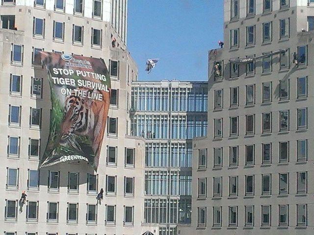 Greenpeace Protest Tactics Greenpeace Protesters Unfurl