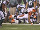 PHOTOS: Bengals vs. Jets at Paul Brown Stadium