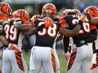 Bengals rout Colts in game with no starters