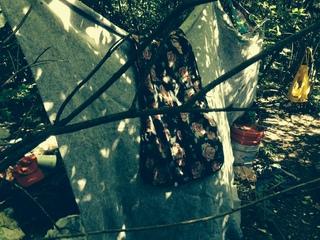 Volunteers needed to clean up homeless campsite