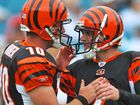 Bengals kickers at odds in UC-Ohio State game