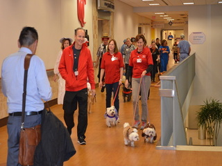 'Howl-o-ween' brings holiday fun, pups to UCMC