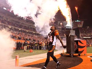 Cleveland Browns 24, Cincinnati Bengals 3
