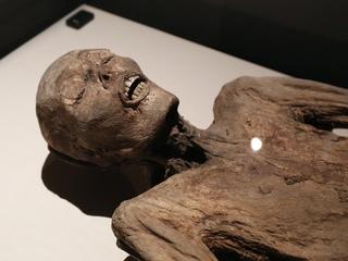 SNEAK PEEK: Mummies of the World Exhibit