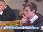 Victims testify against young 2 Gun Gang members