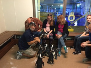 Lauren Hill spends day hanging with penguins