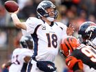 'Perfect Peyton' aims to go 9-0 against Bengals