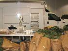 $1 million plus in pot plants seized in raid