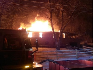 FD: Homeowner says fire may have killed 15 dogs