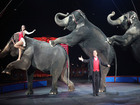 Ringling Bros. circus to give up elephant acts