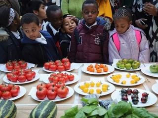 New Cincy company makes veggies tastier for kids