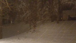 Snow across the Tri-State: Feb. 9