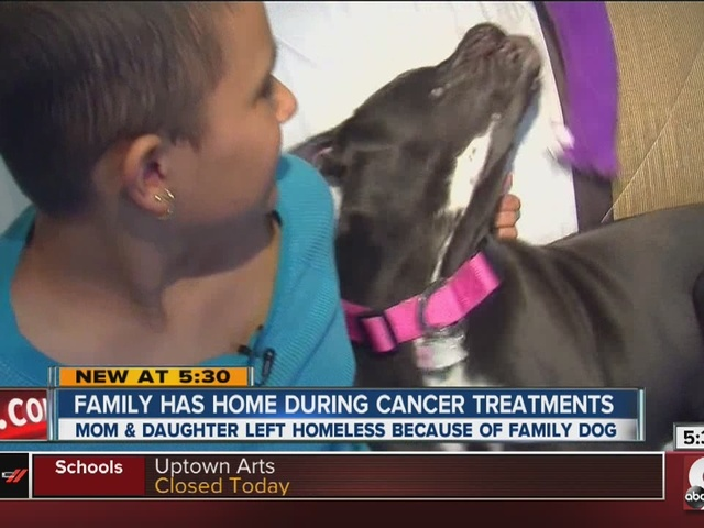 Girl in need of life-saving surgery finds a dog-friendly apartment free…