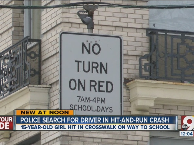 Police search for driver in hit-and-run crash