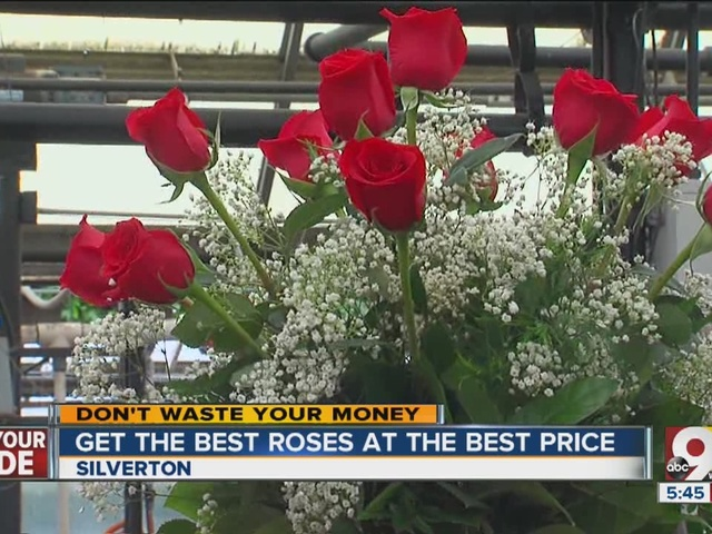 Valentine's Day flowers: Get the best roses at the best price