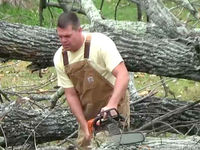 WATCH: Tree trimmer caught in worker comp fraud
