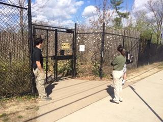 Polar bear escapes enclosure at Ohio zoo