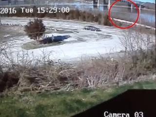 Video shows car falling off Ohio bridge