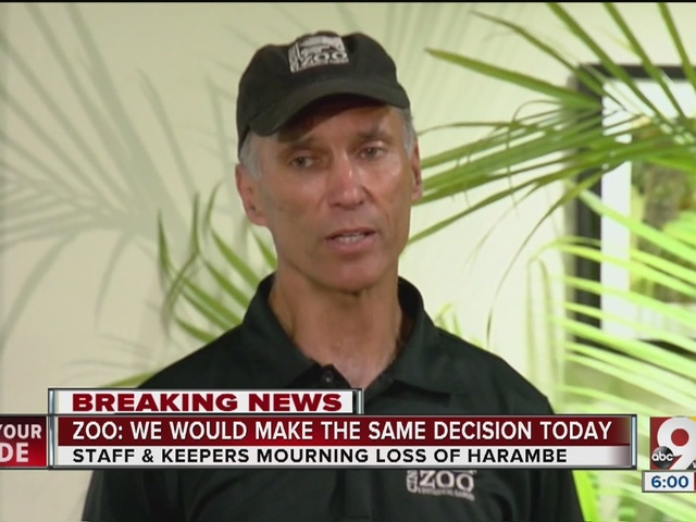 Cincinnati Zoo director defends handlers' decision to rescue child by…