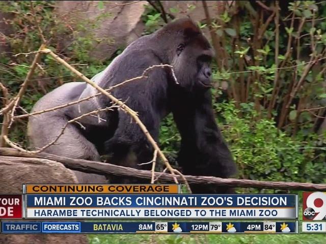 Miami zoo backs Cincinnati zoo's decision