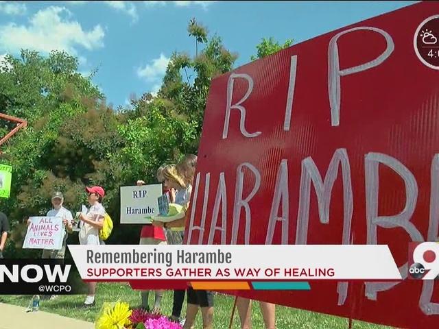 Mourners gather outside Cincinnati Zoo to honor Harambe