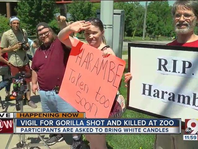 Vigil held for gorilla shot and killed at zoo