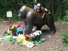 'Everyone wants to be the expert' on Harambe