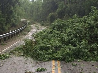 RECAP: Severe storm damage across the Tri-State