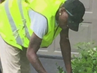 New scam sees burglars disguised as landscapers