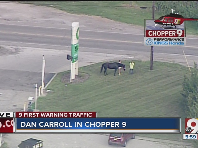 Horses on the loose on I-74