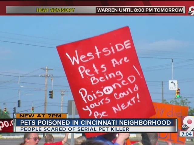 Rash of pet poisonings rocks Sedamsville neighborhood