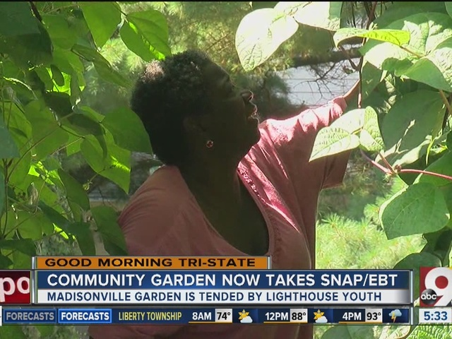 Community garden takes EBT