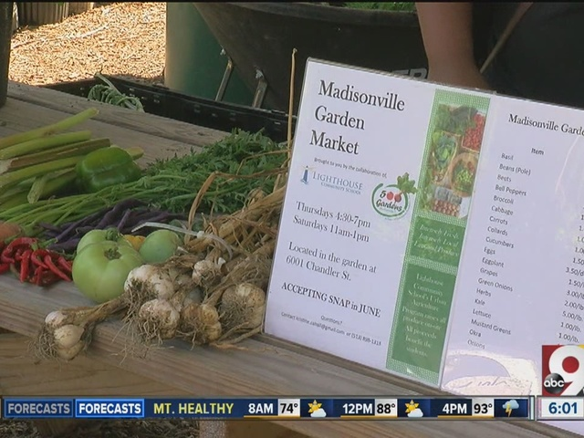 Madisonville Garden Market grows customer base by offering credit card,…