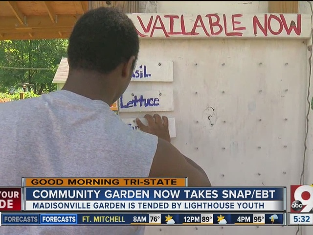Madisonville Garden Market now accepts SNAP/EBT
