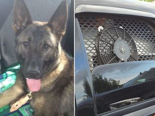 Franklin PD keeps K-9 cool with special cruiser