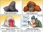 EDITORIAL CARTOON: Let Harambe rest in peace