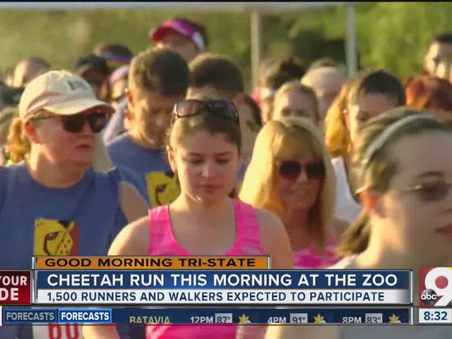 Cheetahs couldn't keep up with these runners