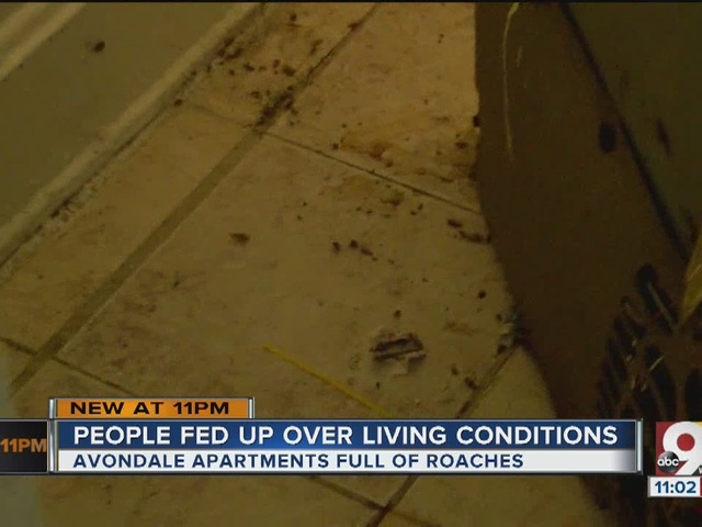 Apartment complex residents fed up over living conditions