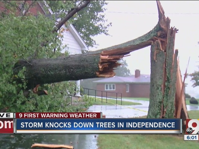 Storm knocks down trees in Independence