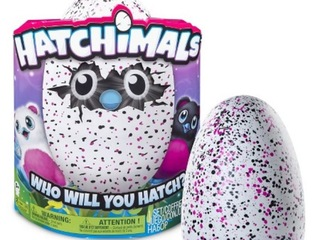 Where you might find Hatchimals this weekend