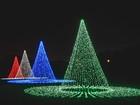 Cincygram: Festivity lights up Coney Island