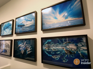 NatGeo photos featured in local gallery